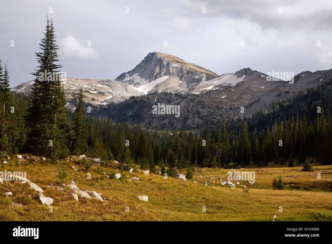 Eagle Cap and open meadows of East Lostine River Valley in the Eagle Cap Wilderness area of Wallowa-Whitman National - Stock Image
