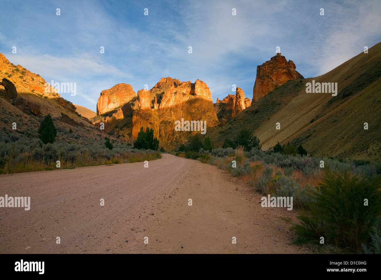 OR00849-00...OREGON - Road through the winding Leslie Gulch. - Stock Image