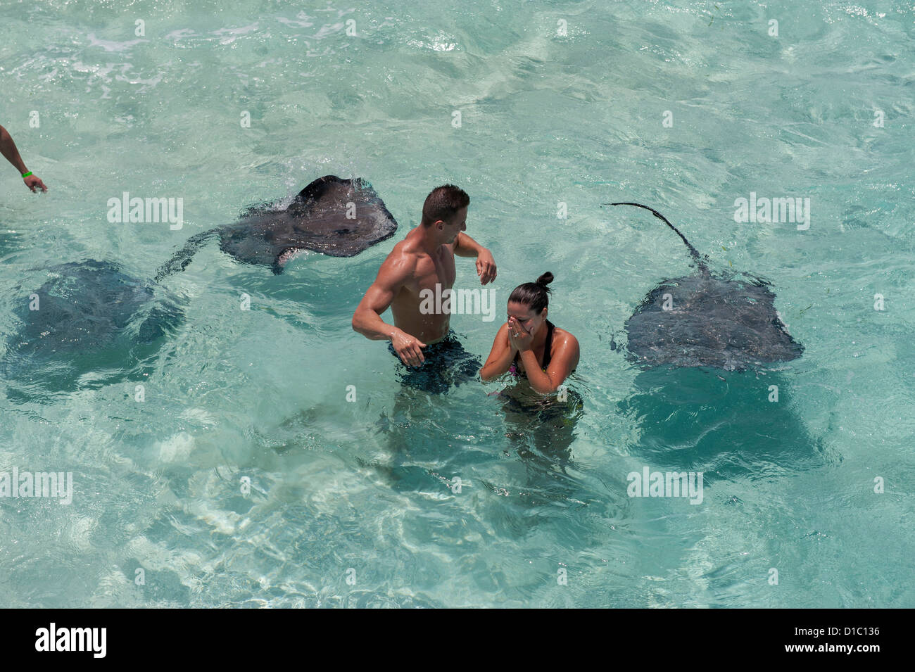 British West Indies, Cayman Islands, Grand Cayman, Stingray City, couple with stingray. (MR) - Stock Image