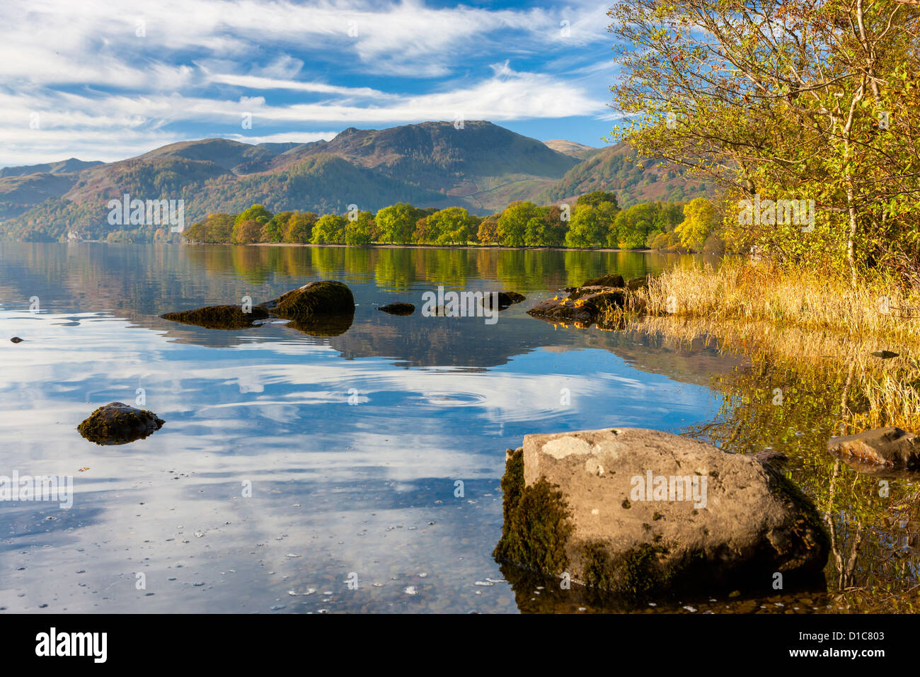 Autumn trees at Ullswater, Lake District National Park, Cumbria, England, UK, Europe. Stock Photo