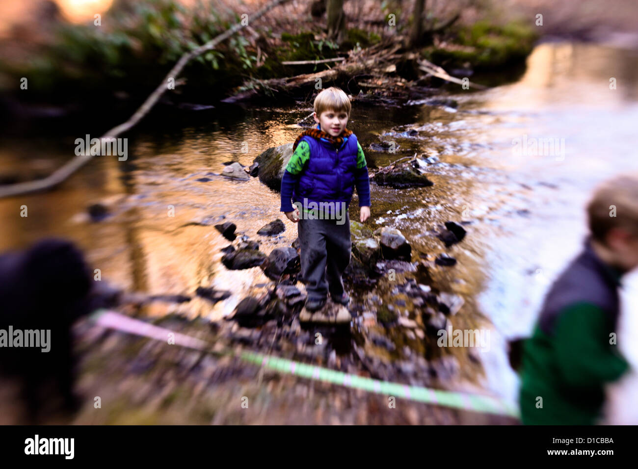 Two little boys playing in and around a stream on a fall day with their dog Stock Photo