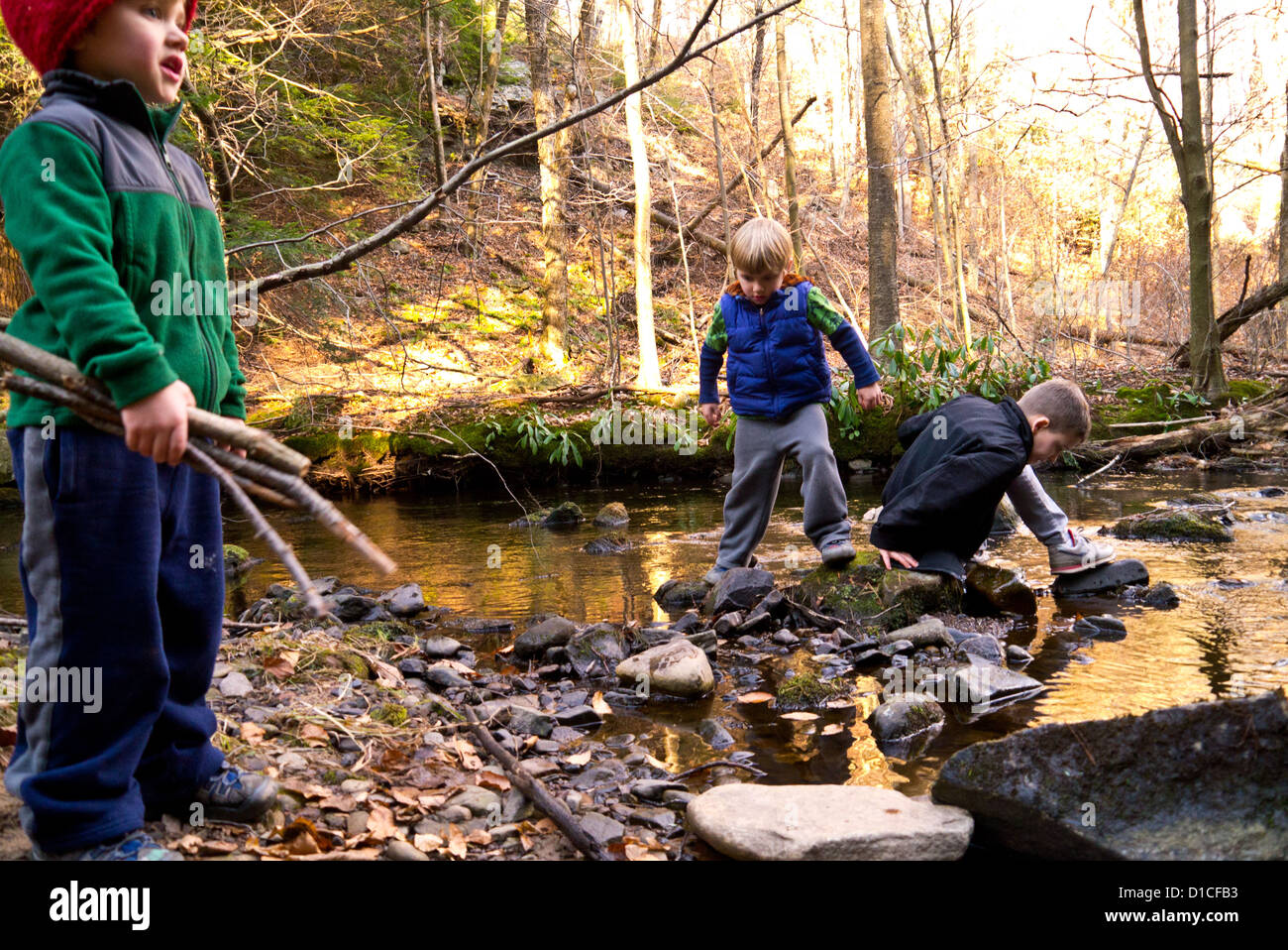 Three little boys playing in and around a stream on a fall day - Stock Image