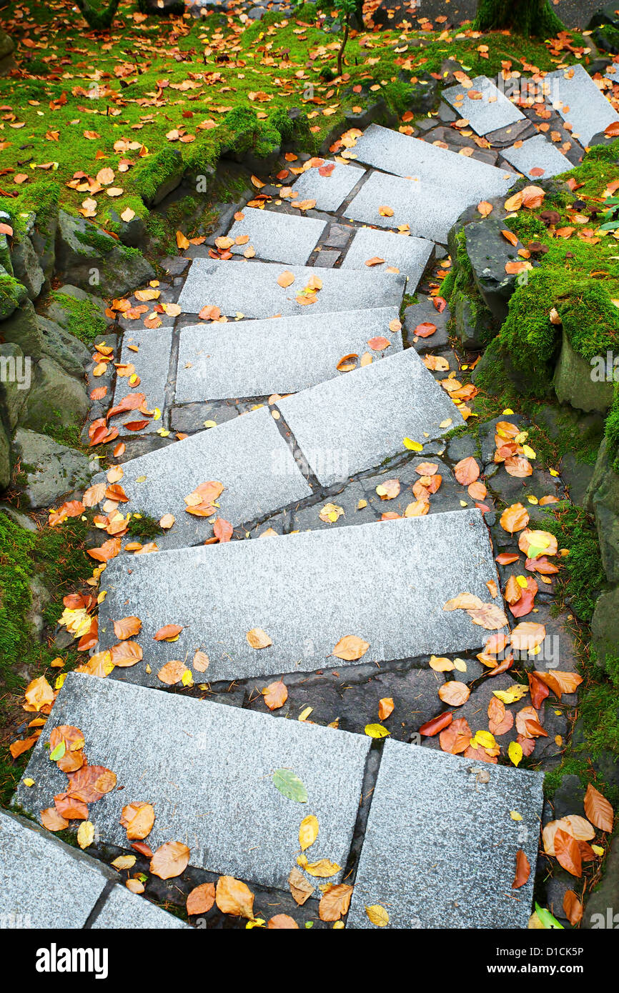outdoor downward leading steps outdoor in a park - Stock Image