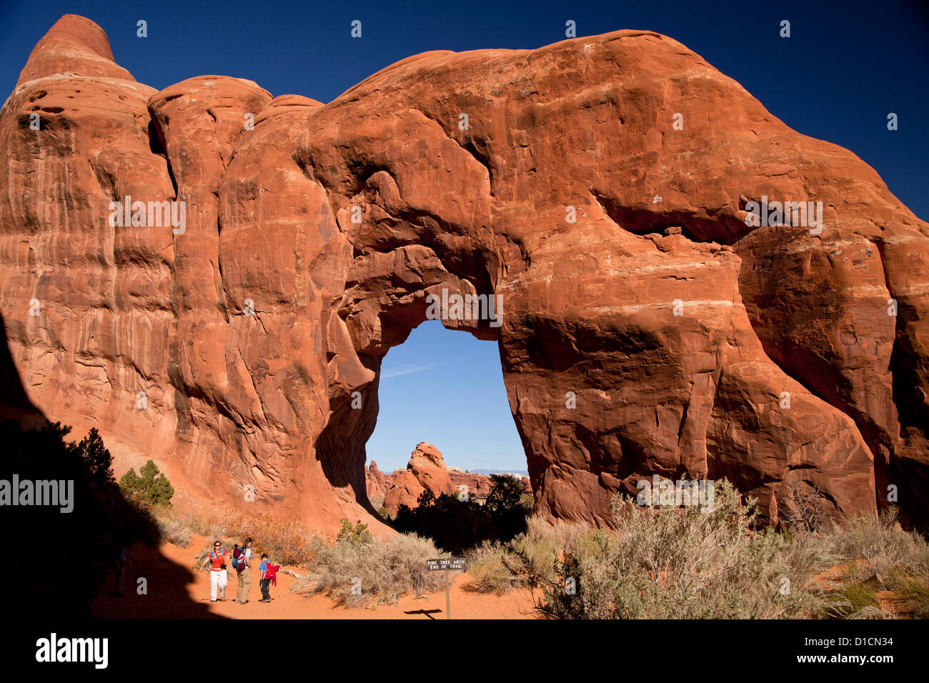 Pine Tree Arch at Devil's Garden, Arches National Park just outside of Moab, Utah, United States of America, - Stock Image