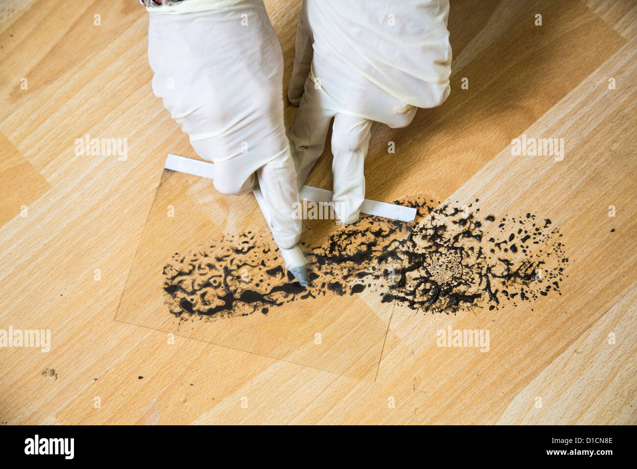 Police crime scene unit. Securing of evidences. saving a footprint, shoe print with a foil. - Stock Image