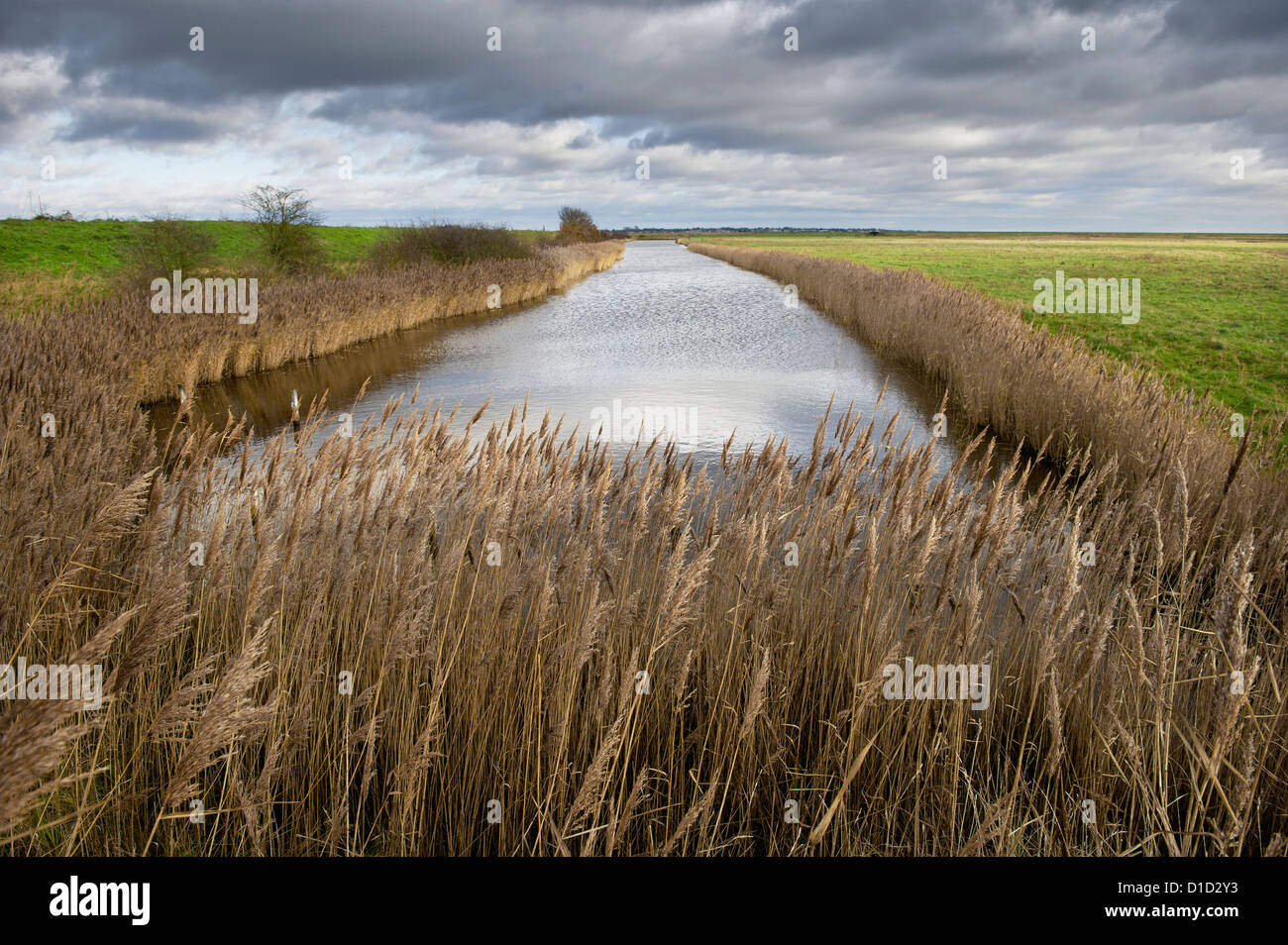 The main sluice in Tollesbury Wick Marshes in Essex. - Stock Image