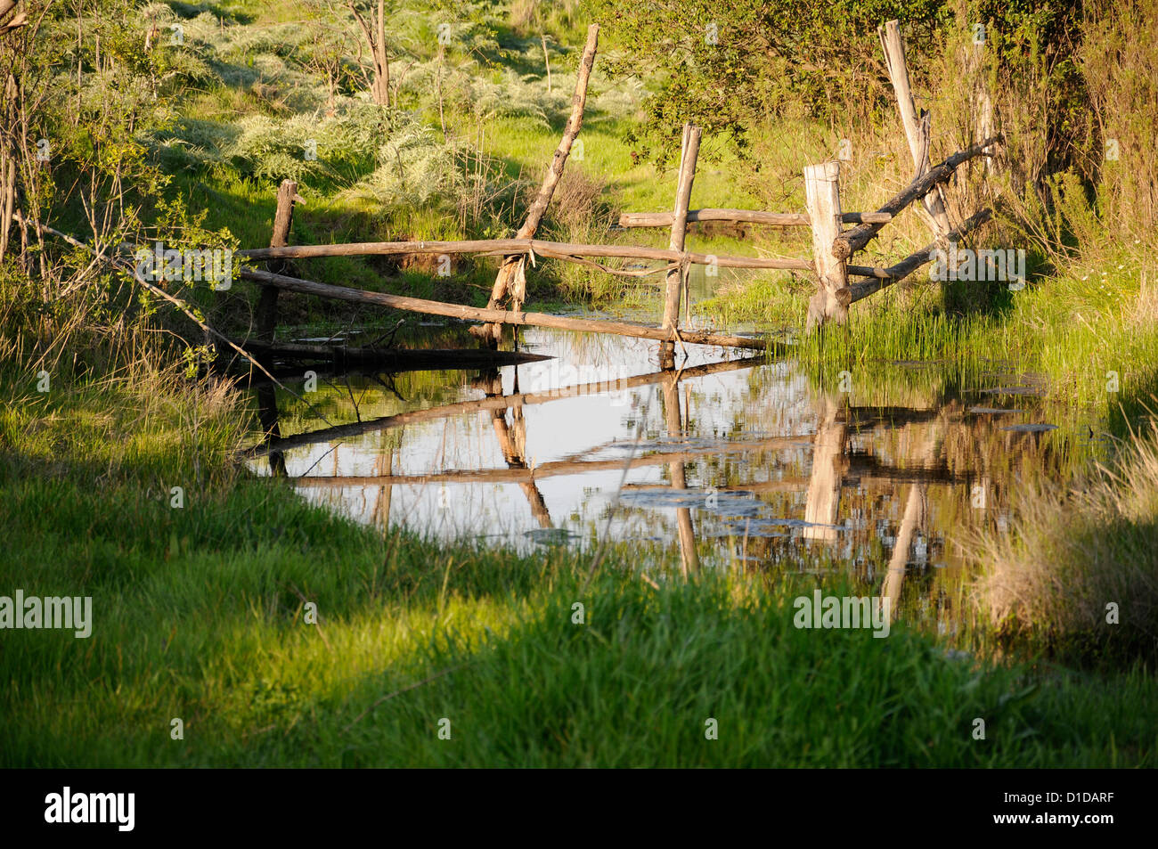 Fence in pool of water - Stock Image