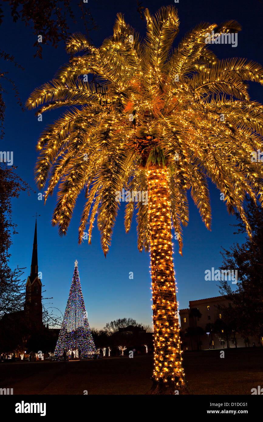 Palm Tree Christmas Lights Stock Photos Amp Palm Tree