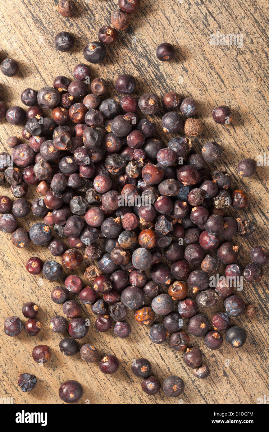 Juniper Berries - Stock Image