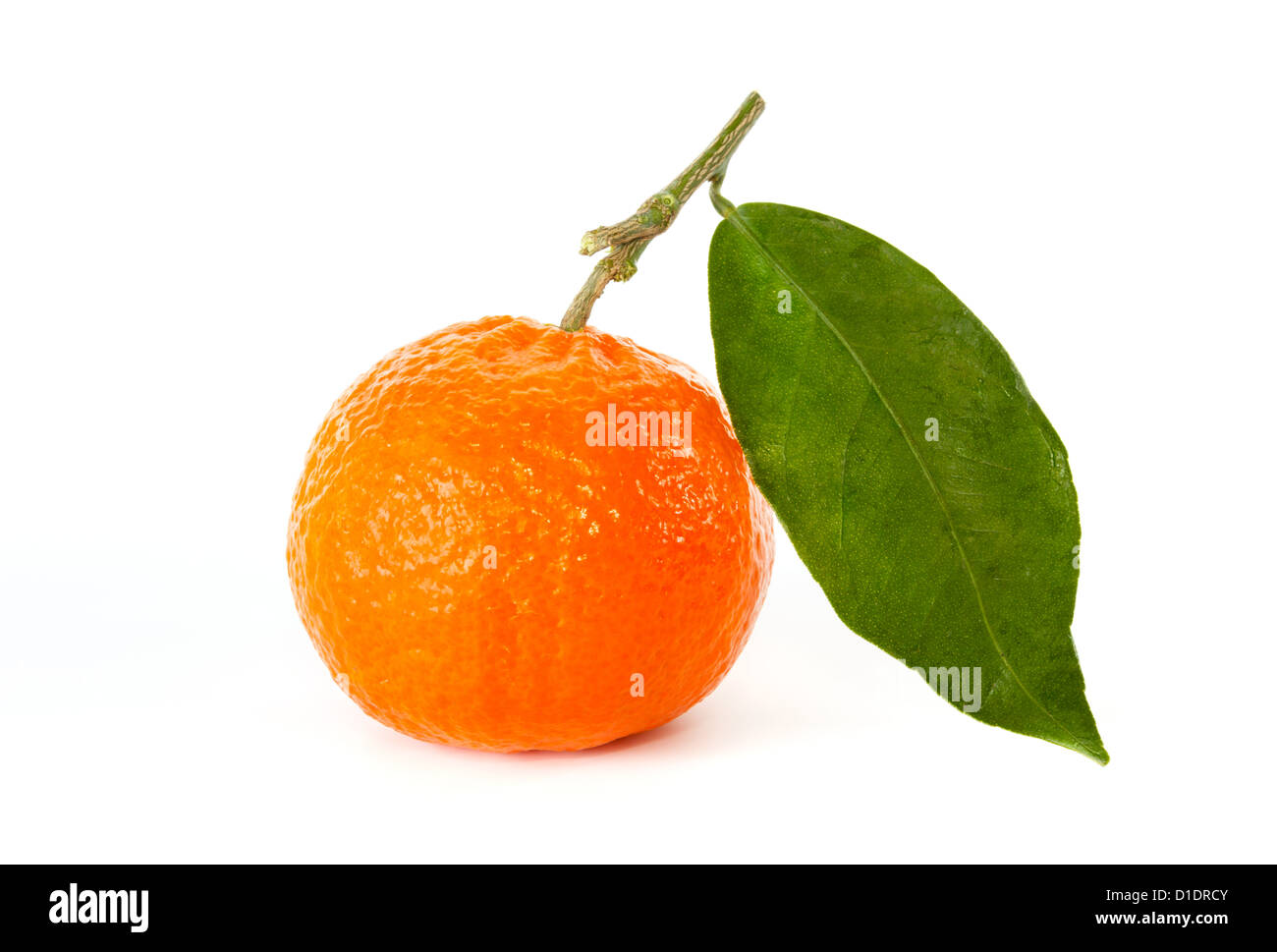Tangerine with stem and leaf against a white background - Stock Image