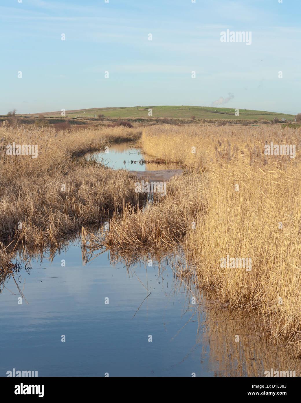 landfill at Rainham,Essex - Stock Image