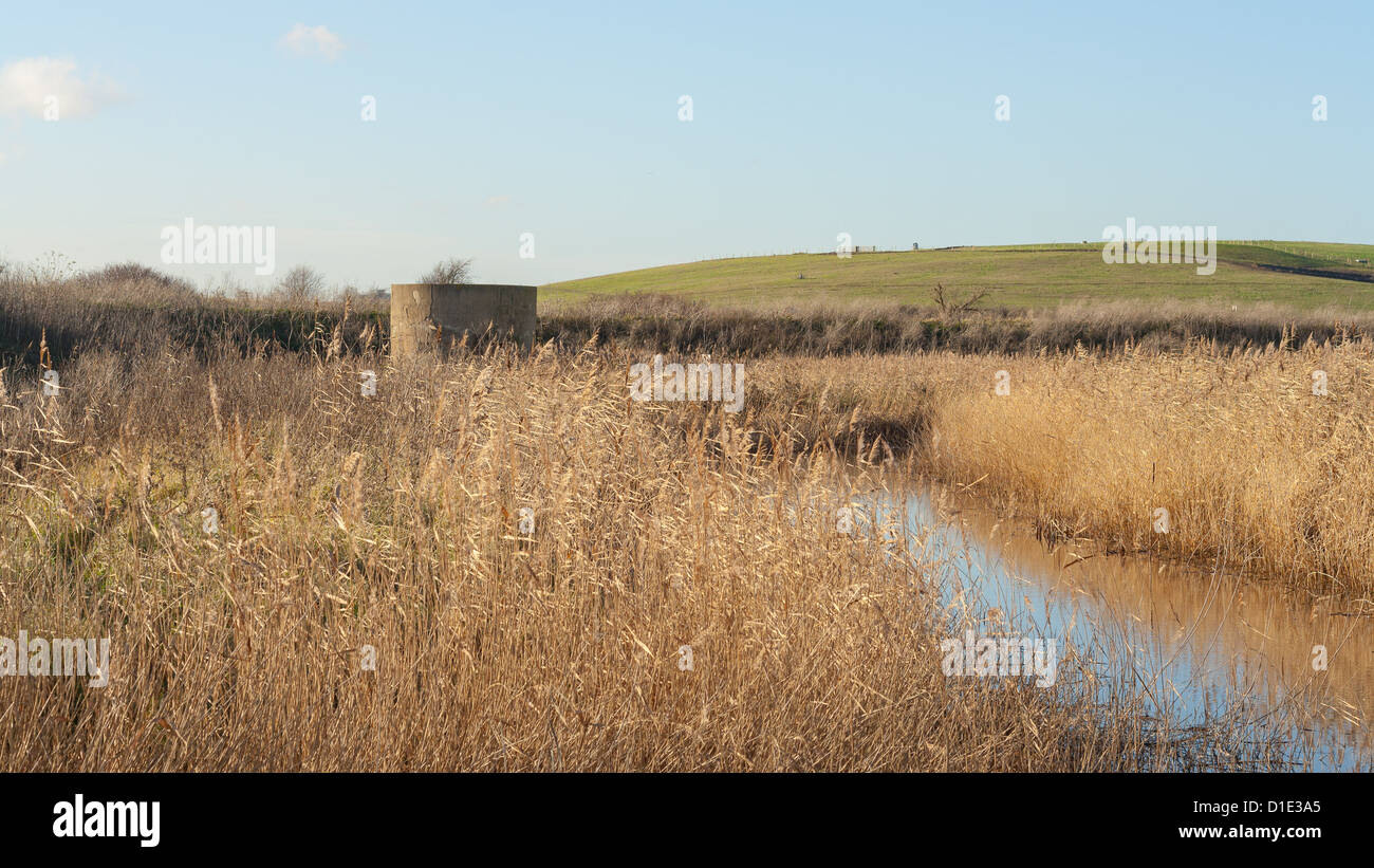 landfill reclaimed land - Stock Image
