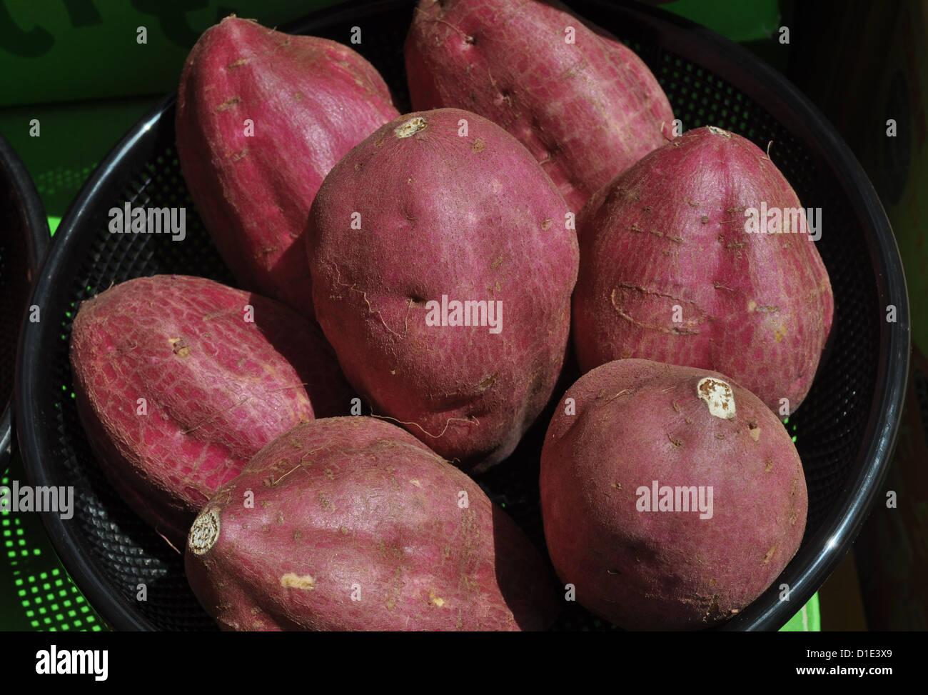 Naha (Okinawa, Japan), sweet potatoes - Stock Image