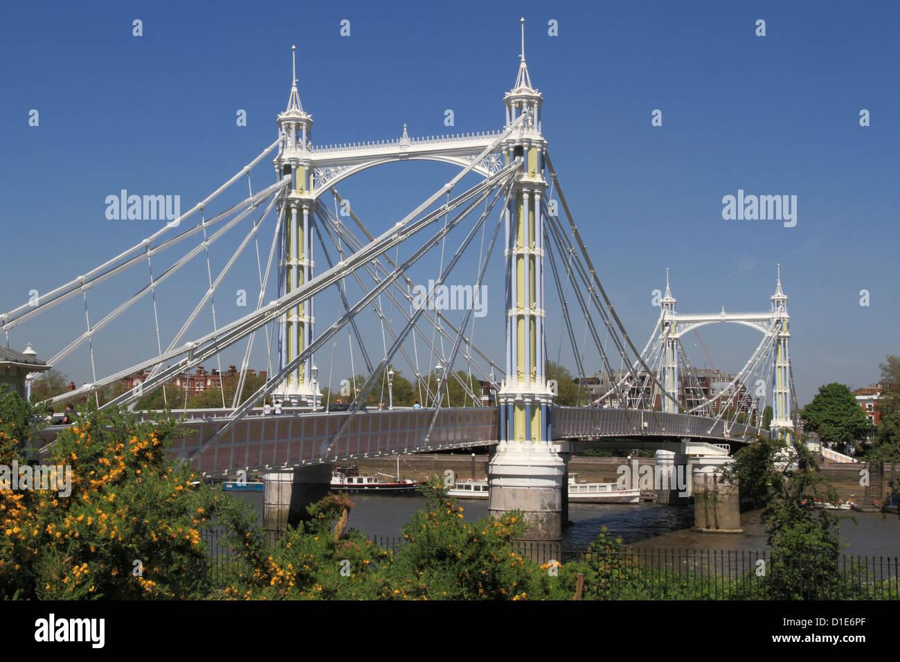 Albert Bridge over River Thames, Battersea, London, England, United Kingdom, Europe - Stock Image