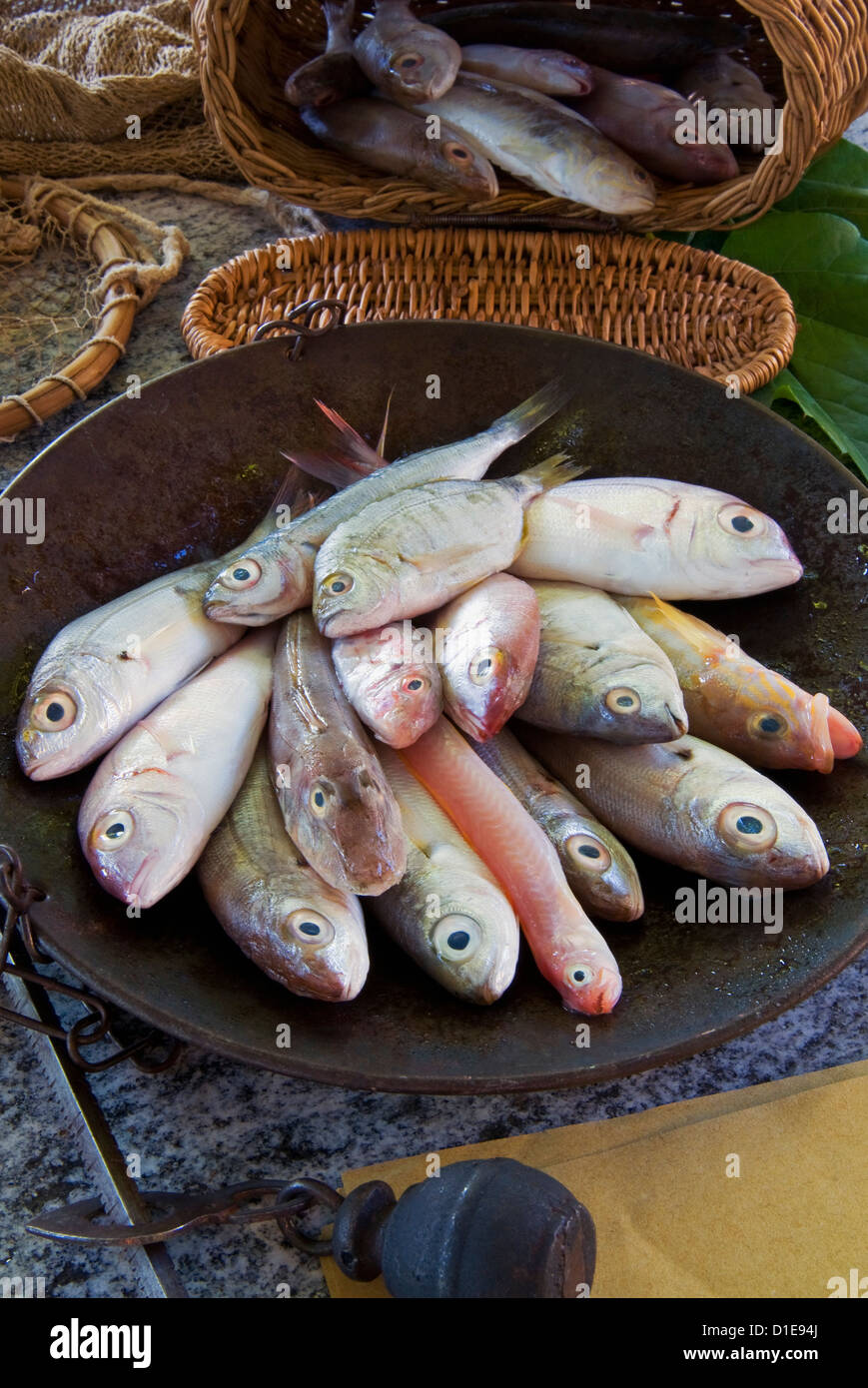 Steelyard balance containing Mediterranean fish, sea bream, tub gurnard, comber and red bandfish, Italy - Stock Image