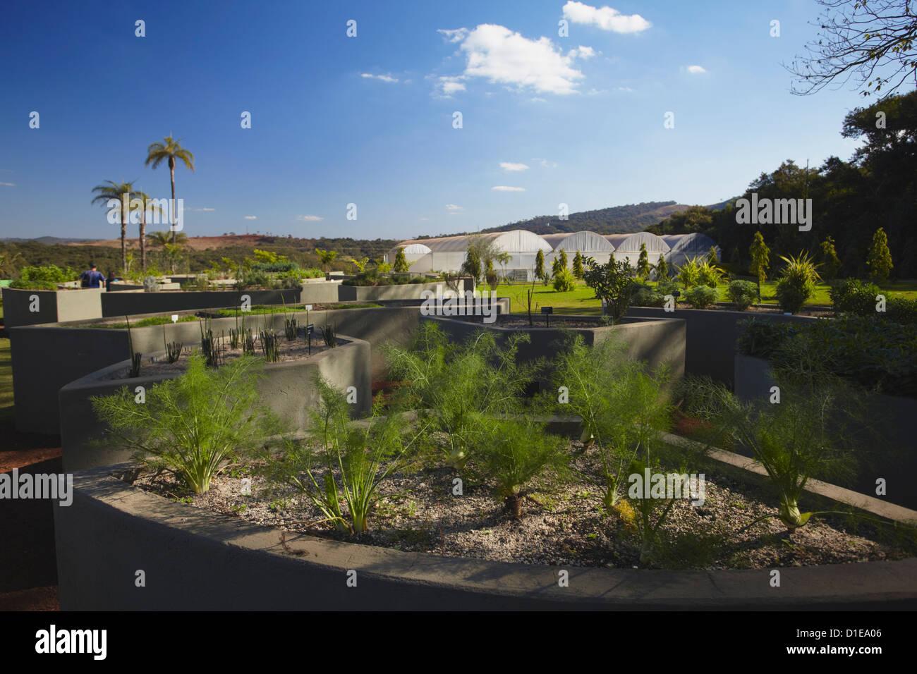 Sensorial Garden at Centro de Arte Contemporanea Inhotim, Brumadinho, Belo Horizonte, Minas Gerais, Brazil. South - Stock Image