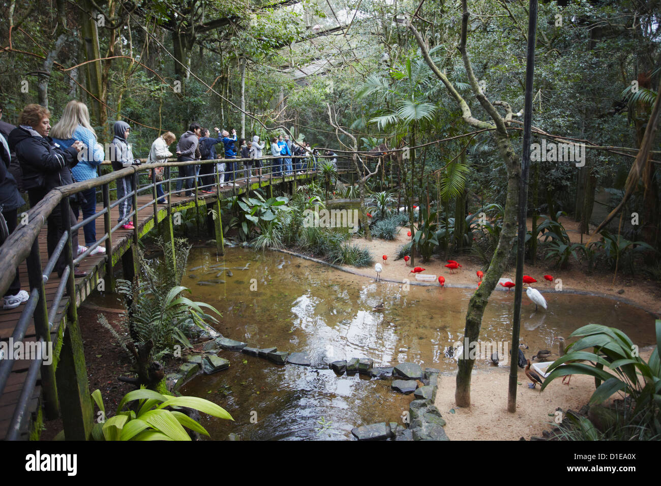 People inside walk-in enclosure at Parque das Aves (Bird Park), Iguacu, Parana, Brazil, South America - Stock Image