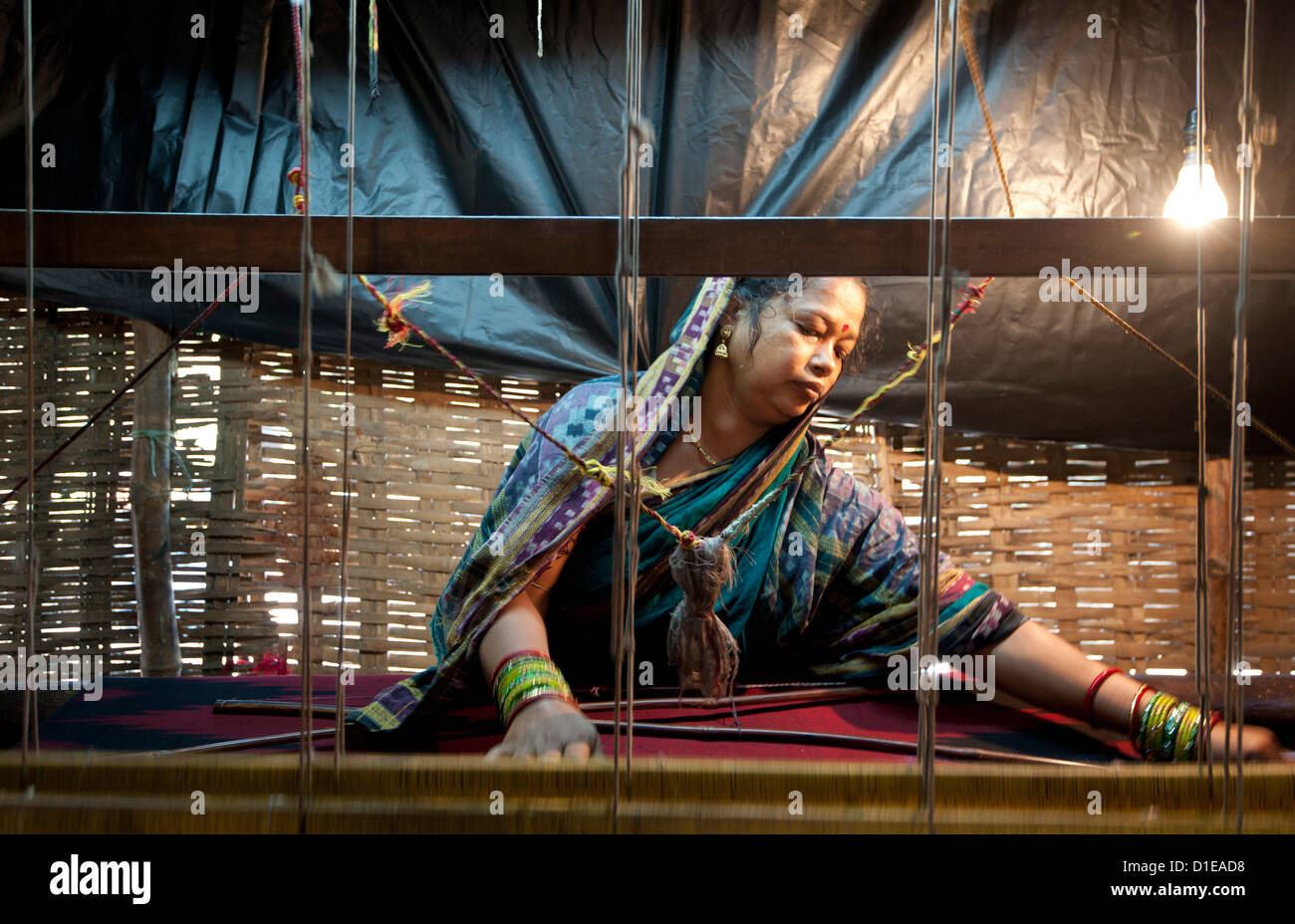 Woman in blue patterned sari weaving at loom in rough village shack, Naupatana weaving village, rural Orissa, India, - Stock Image