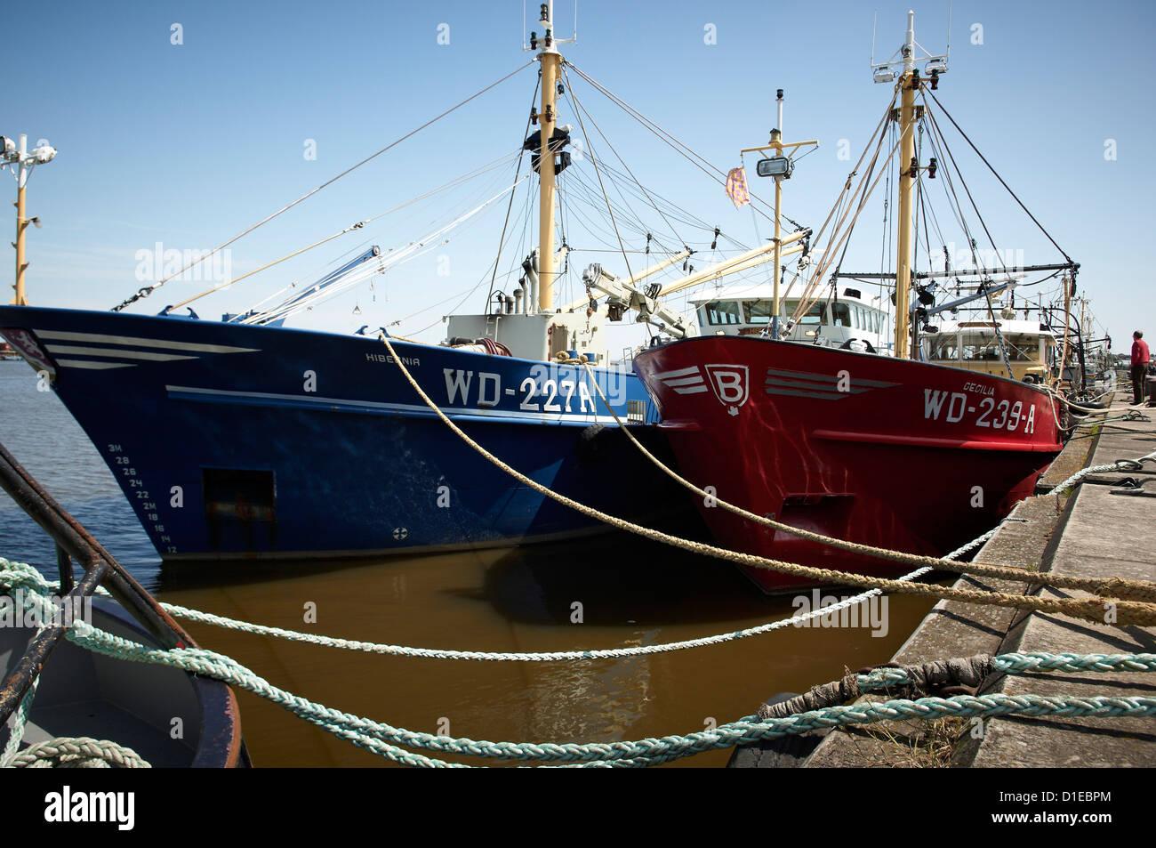 Fishing fleet, Wexford, Leinster, Republic of Ireland, Europe - Stock Image