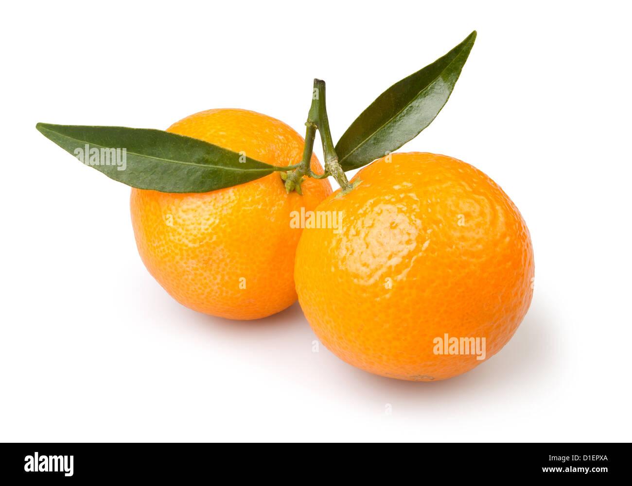 tangerine two on white background - Stock Image