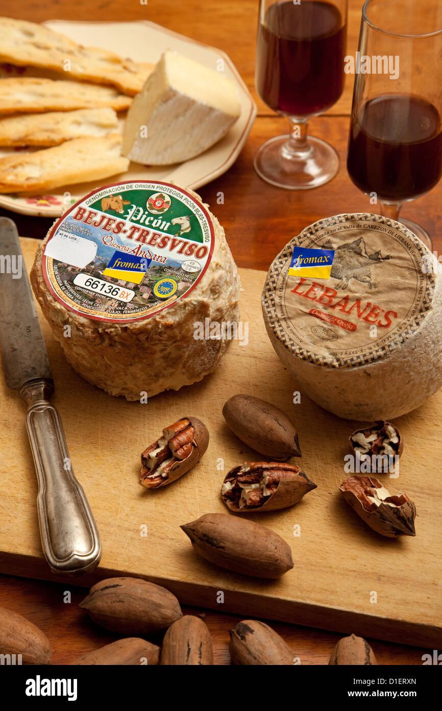 Cheese origin designation Cantabria Spain - Stock Image
