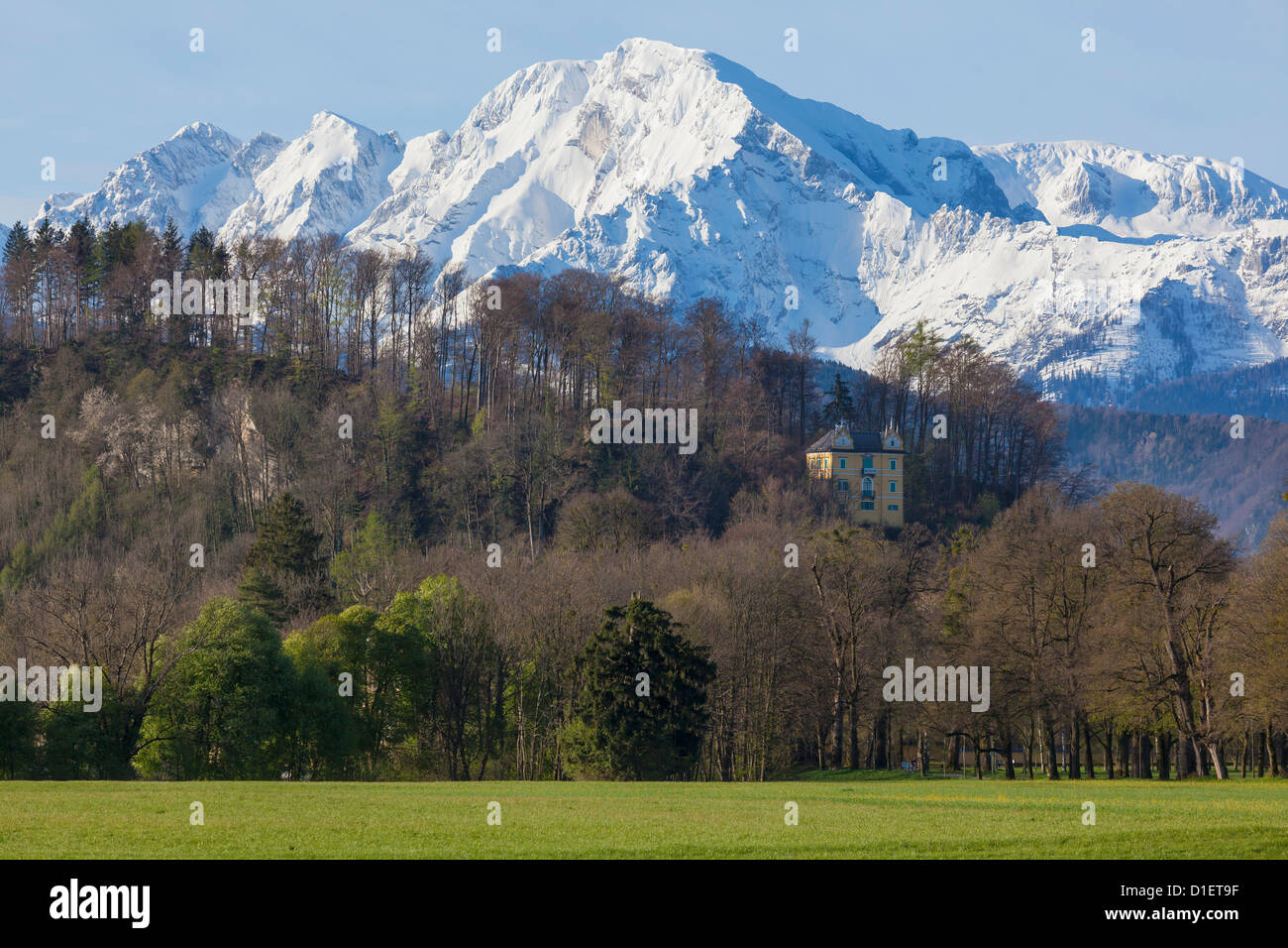 View above the Hellbrunner Berg to Hoher Goell, Berchtesgaden Alps Stock Photo