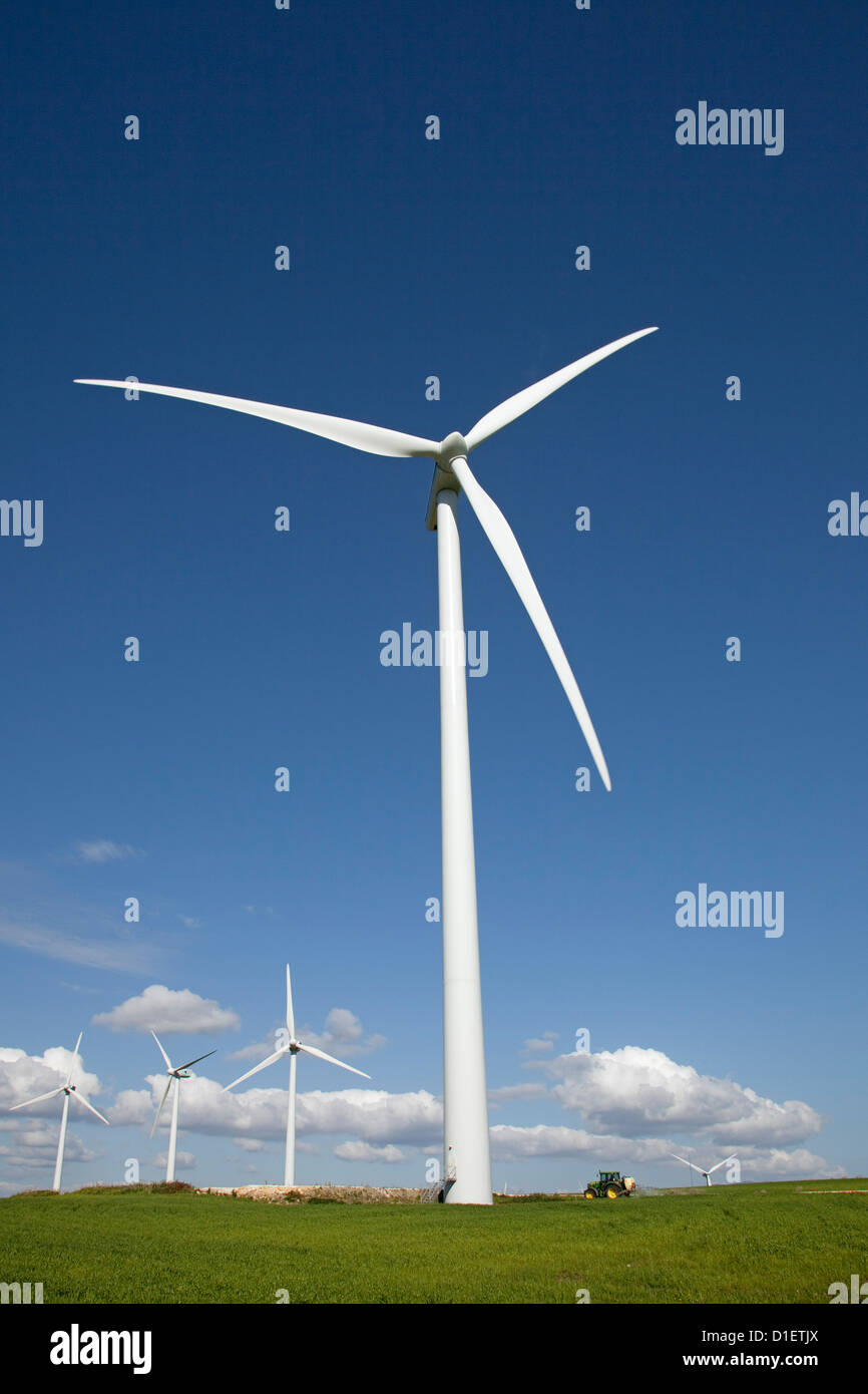 Cornfields and wind mills Tarifa Cadiz Andalusia Spain - Stock Image