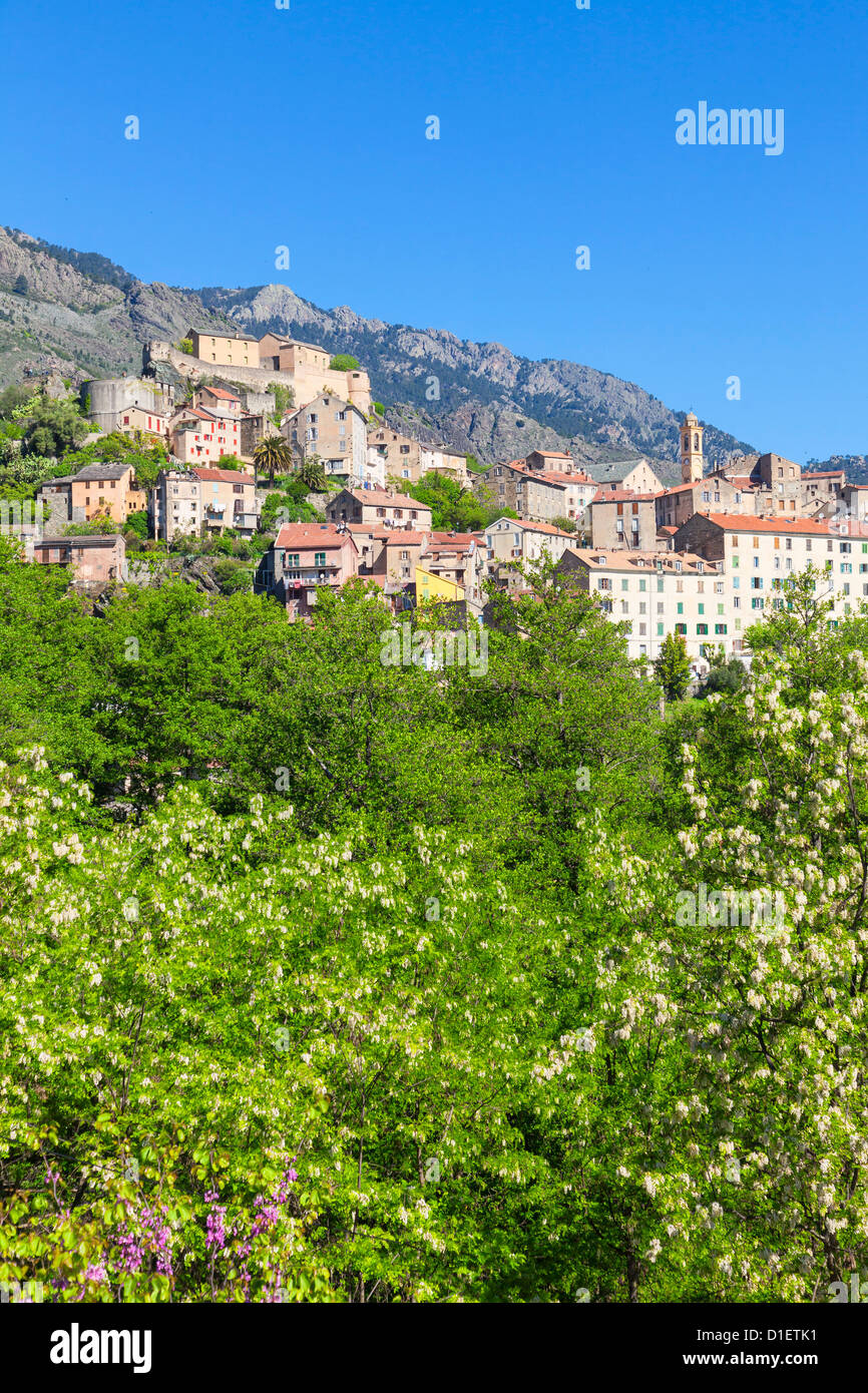Townscape of Corte in spring, Corsica, France - Stock Image