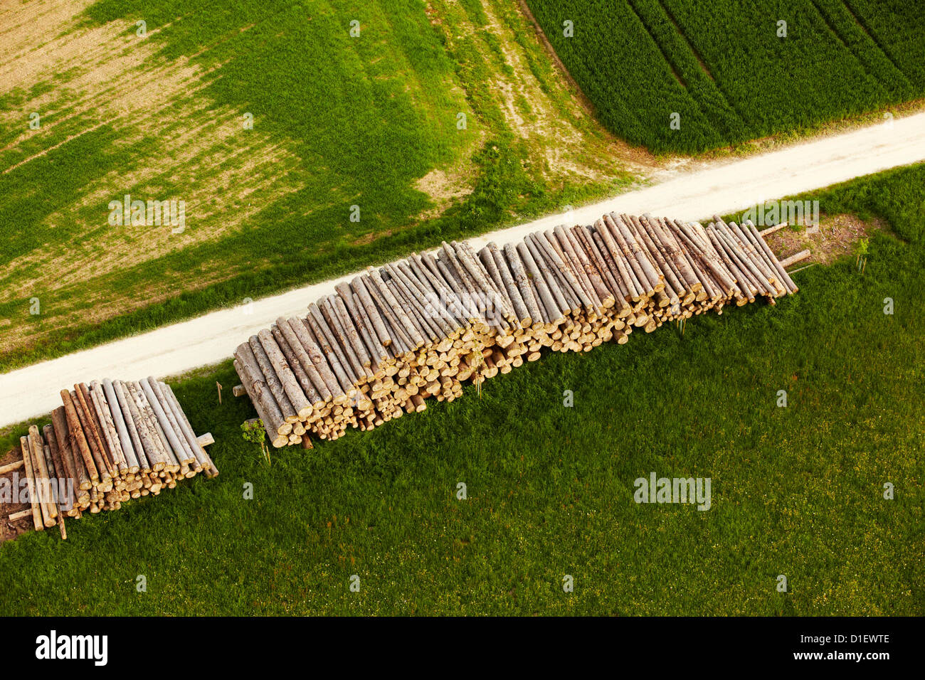 Stored logs at a path, aerial photo - Stock Image