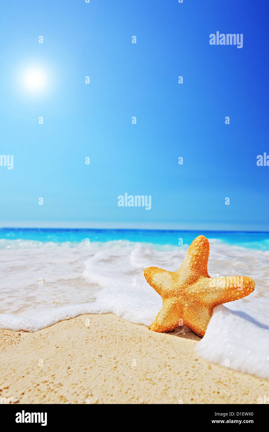 A starfish on a beach with clear sky and wave, Greece Stock Photo