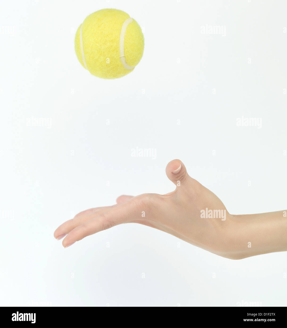 tennis ball thrown up in hand isolated on white background - Stock Image
