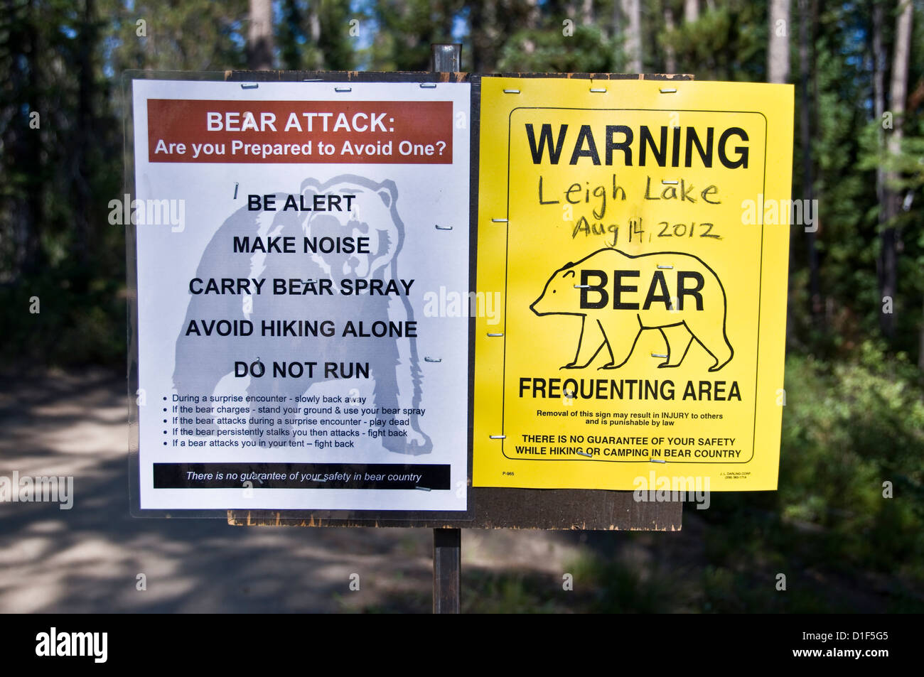 Information and rules sign about bears on a trail around Leigh Lake - Grand Teton national park, Wyoming, USA - Stock Image
