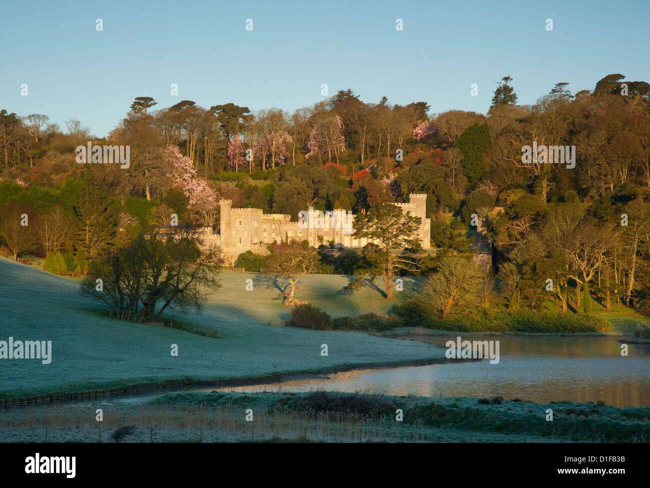 Sunrise at Caerhays Castle with magnolias behind the castle and sun reflected in the lake, St. Austell, Cornwall, - Stock Image