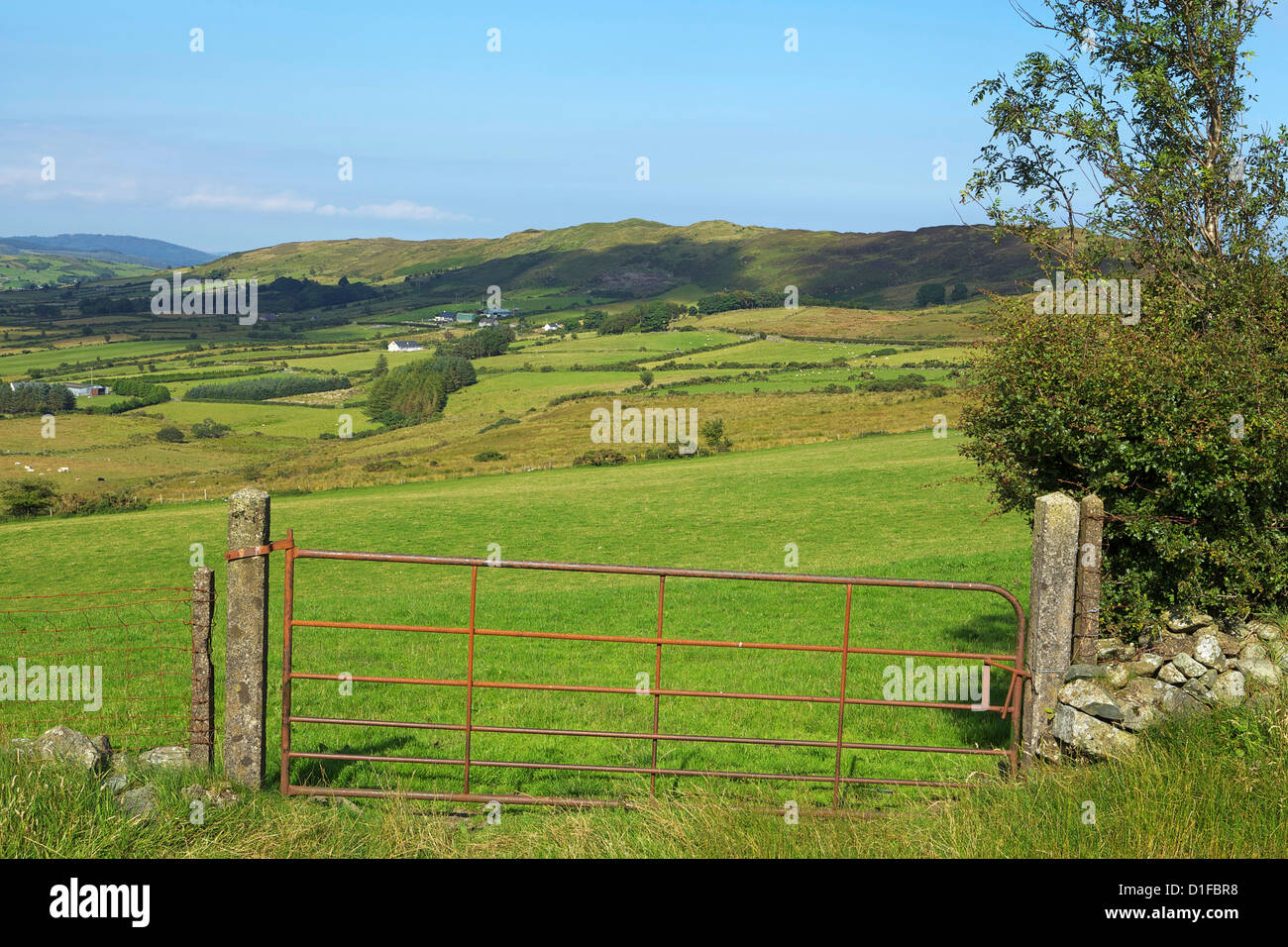 Mourne Mountains, County Down, Ulster, Northern Ireland, United Kingdom, Europe - Stock Image