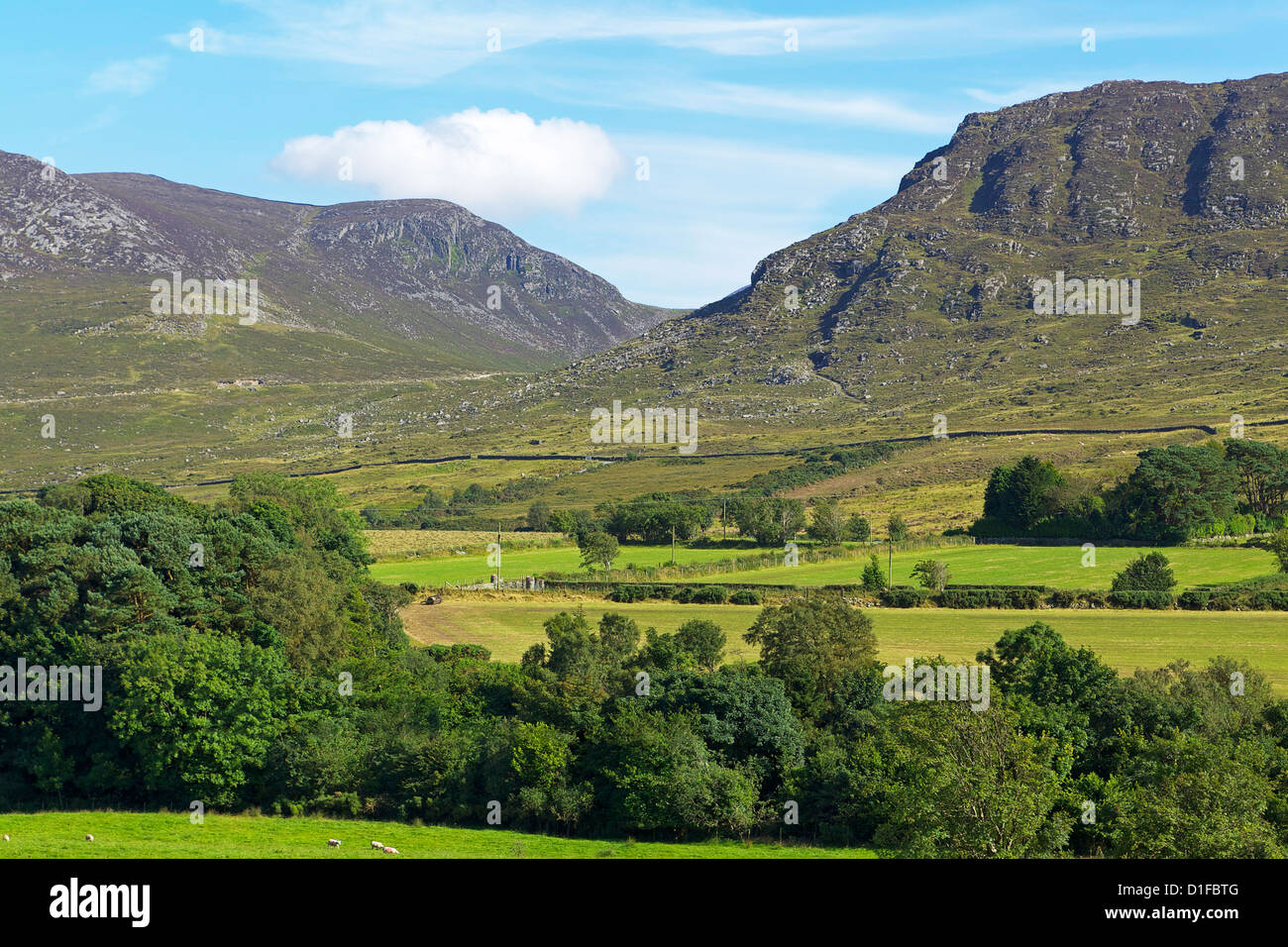 Slievenaglogh, Mourne Mountains, County Down, Ulster, Northern Ireland, United Kingdom, Europe - Stock Image