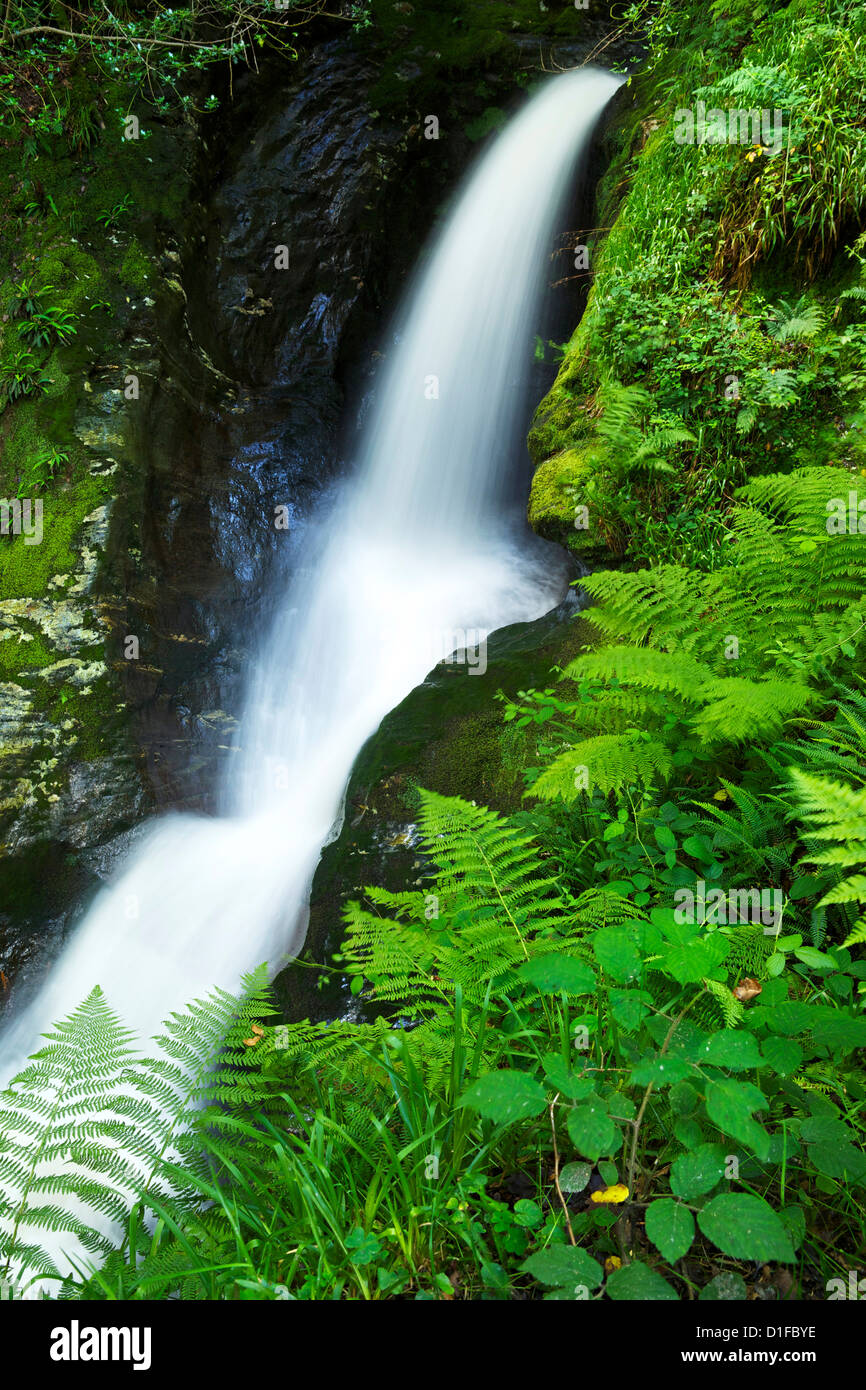 Waterfall, Glendalough, County Wicklow, Leinster, Republic of Ireland, Europe - Stock Image