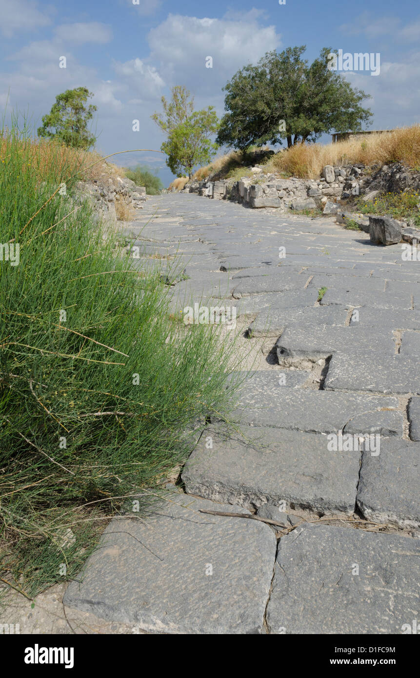 Hippos Sussita archaeological site, Golan Heights, Israel, Middle East - Stock Image