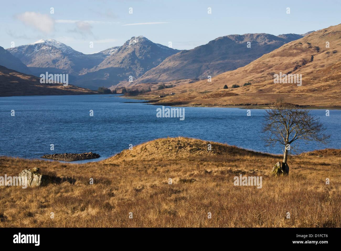 Loch Arklet, Trossachs, Scotland, United Kingdom, Europe - Stock Image