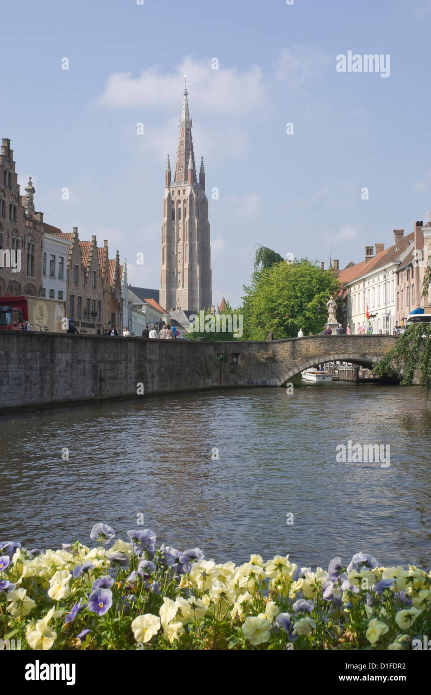 Canal scene with the spire of the Church of Our Lady, Brugge, Belgium, Europe - Stock Image