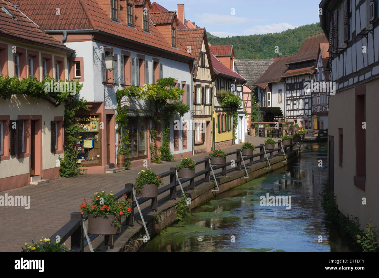 Traditional houses by mill stream along Wassergasse, Annweiler am Trifels, Pfalz wine area, Rhineland Palatinate, - Stock Image