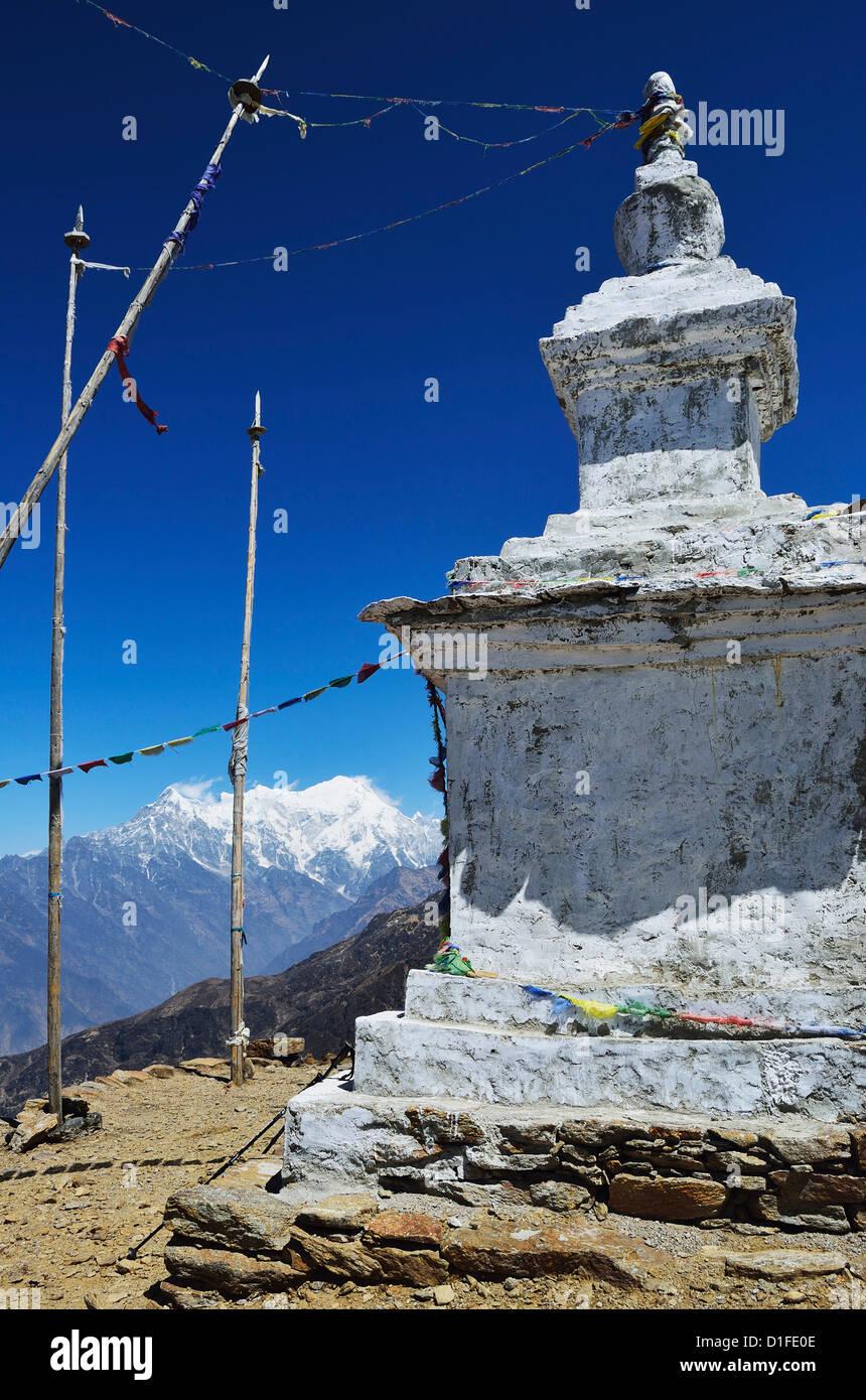 Stupa, Langtang National Park, Bagmati, Central Region (Madhyamanchal), Nepal, Himalayas, Asia - Stock Image