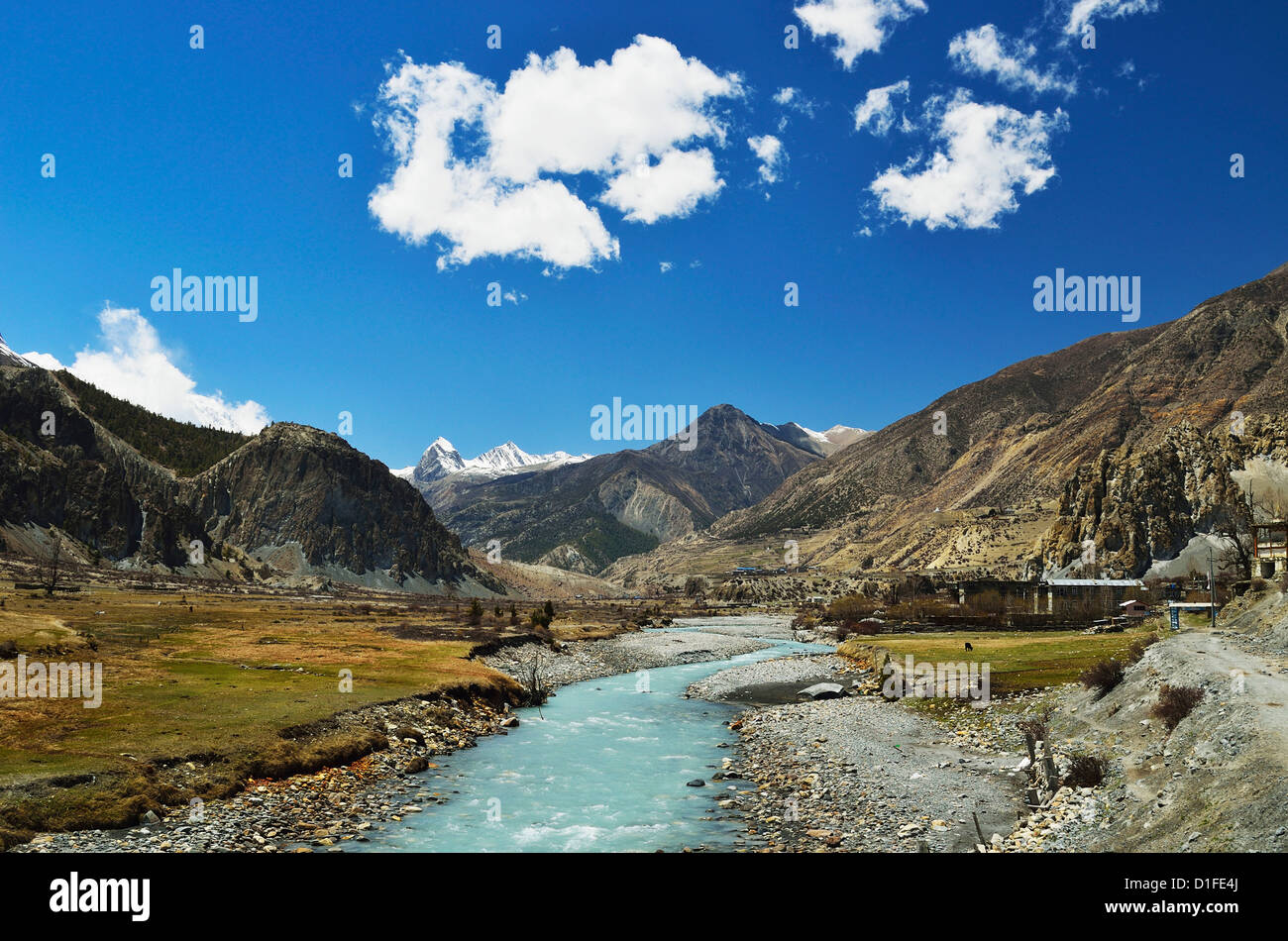 Marsyangdi River Valley, Annapurna Conservation Area, Gandaki, Western Region (Pashchimanchal), Nepal, Asia - Stock Image