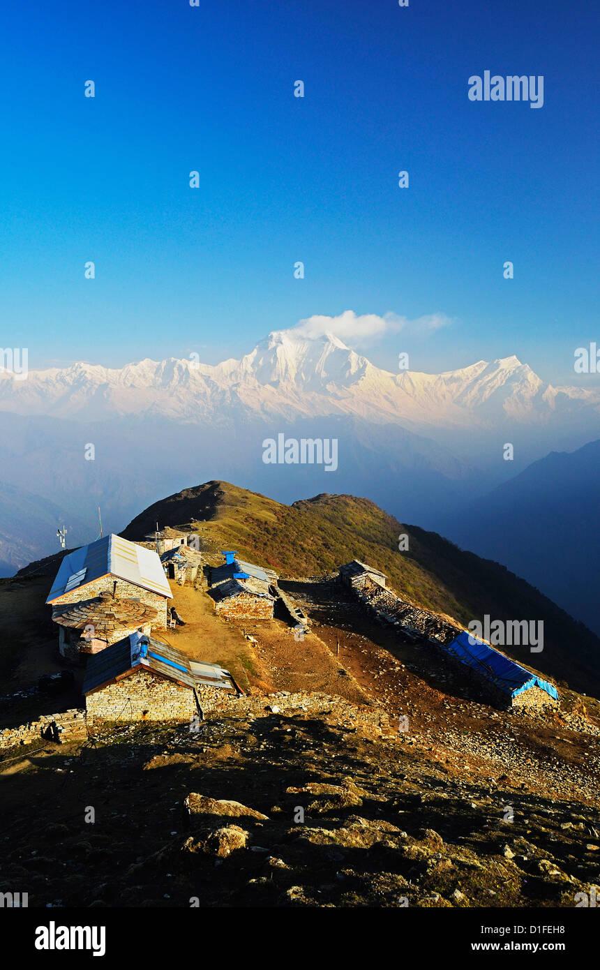 Dhaulagiri Himal seen from Khopra, Annapurna Conservation Area, Dhawalagiri (Dhaulagiri), Western Region (Pashchimanchal), - Stock Image