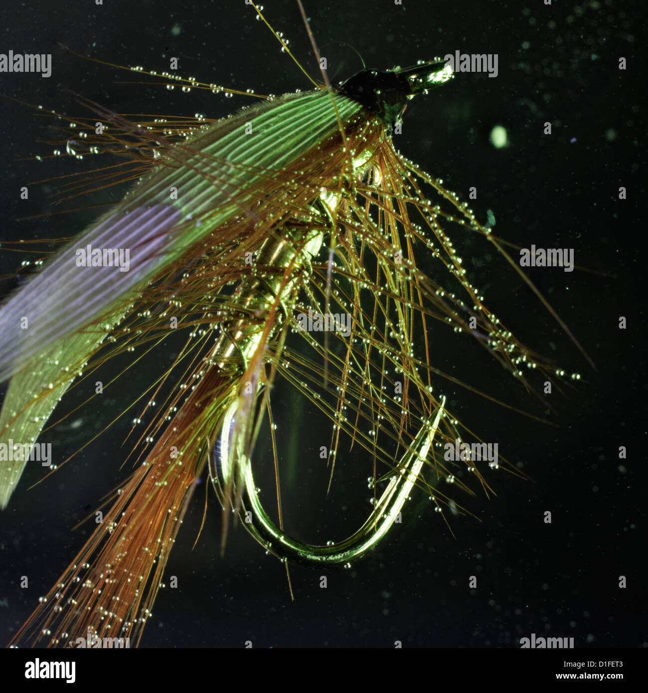 Wickhams fancy artificial Fishing fly used in angling in extreme close shot in water - Stock Image