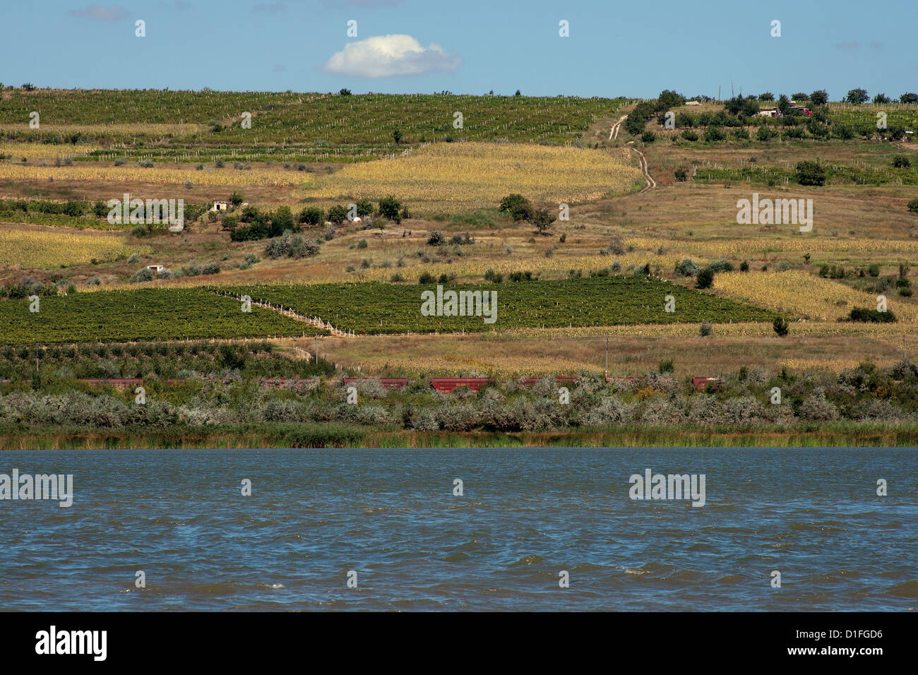 Moldova landscape with grapes on the hill, freight train and lake - Stock Image