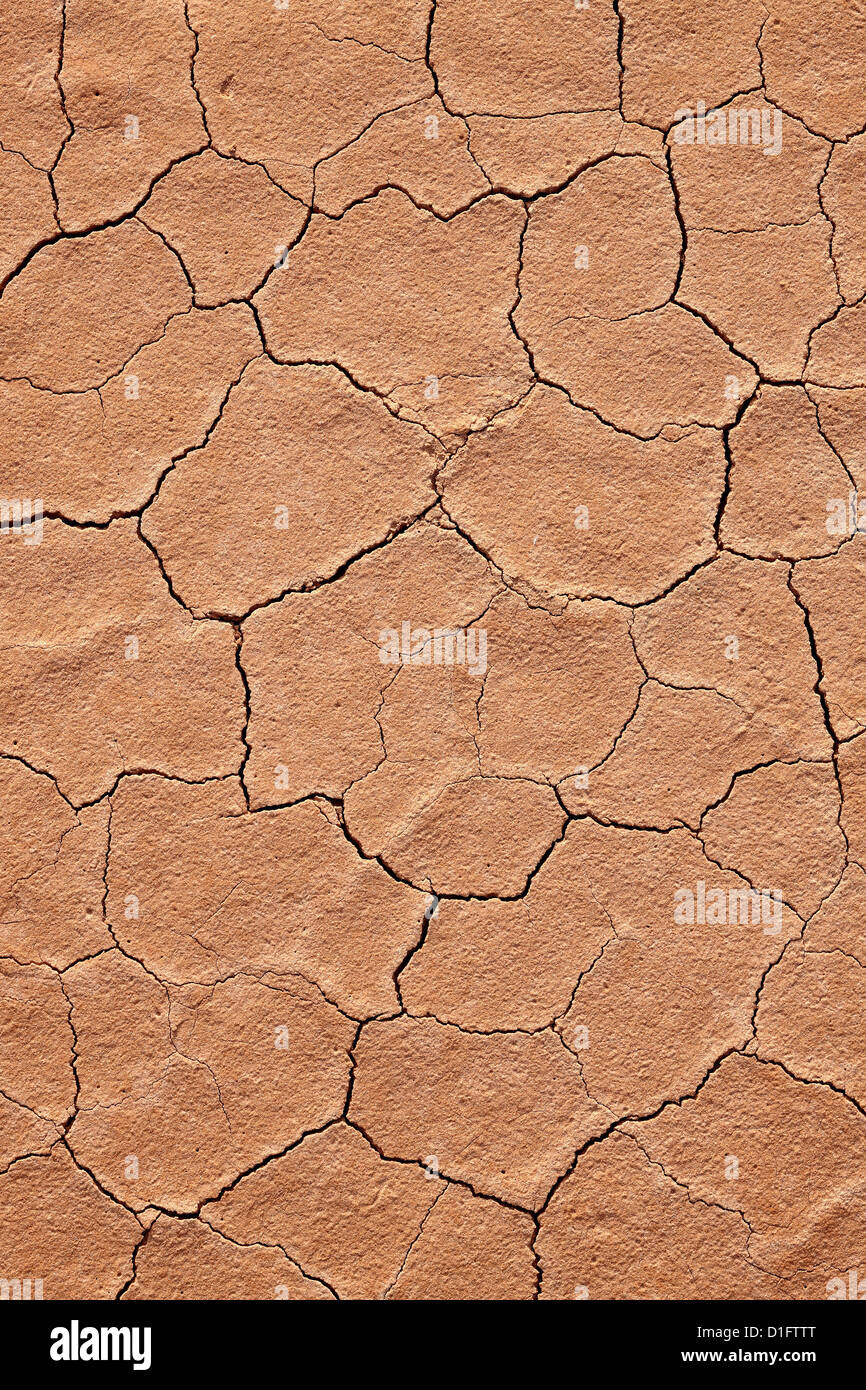 Cracked red rock soil, Grand Staircase-Escalante National Monument, Utah, United States of America, North America - Stock Image