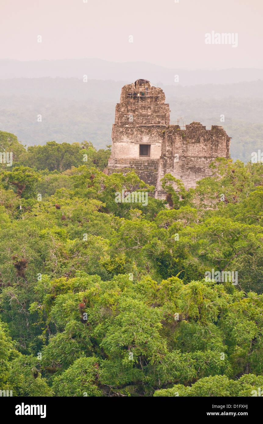 Tikal National Park (Parque Nacional Tikal), UNESCO World Heritage Site, Guatemala, Central America - Stock Image