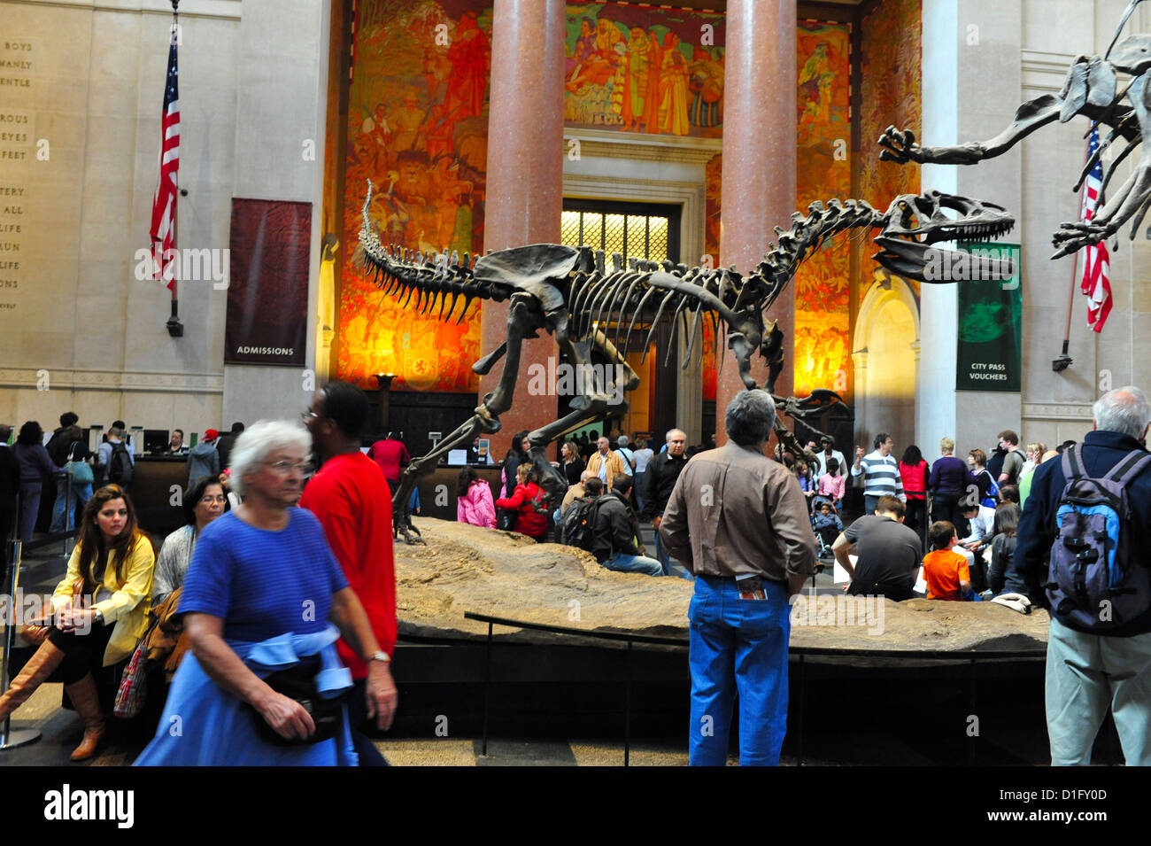 Visitors at the American Museum of Natural History in Manhattan New York USA - Stock Image