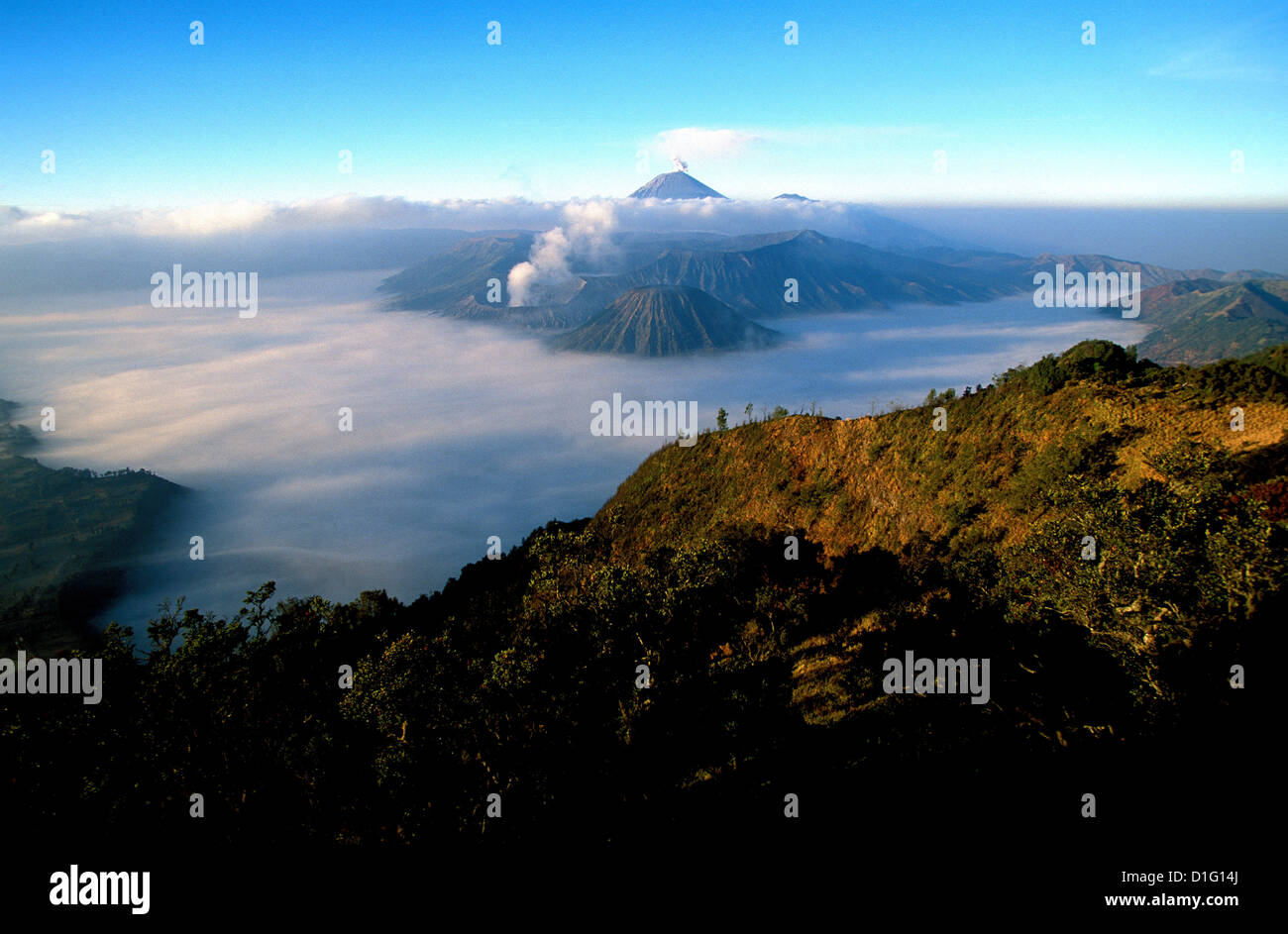 Caldeira and Bromo, 2329 m, and Semeru, 3676 m, two volcanoes on Java, Indonesia, Southeast Asia, Asia - Stock Image