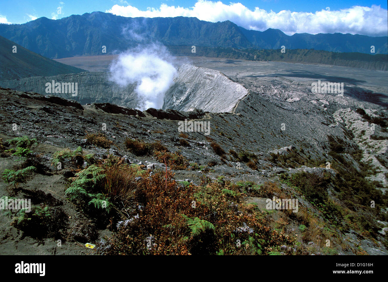 Caldeira and Bromo at 2329 m, and Semeru at 3676m, volcanoes on Java, Indonesia, Southeast Asia, Asia - Stock Image